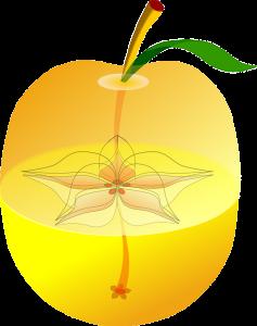 apple-37116_640