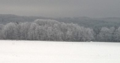 Hanshaw Rd Snow 02102015