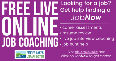 Free Live Online Job Coaching and Resume Review from JobNow