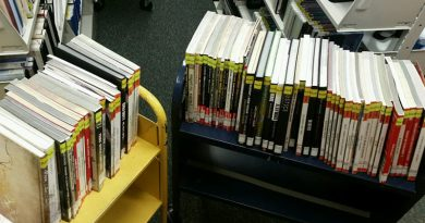 Strategy Guides on Book Cart